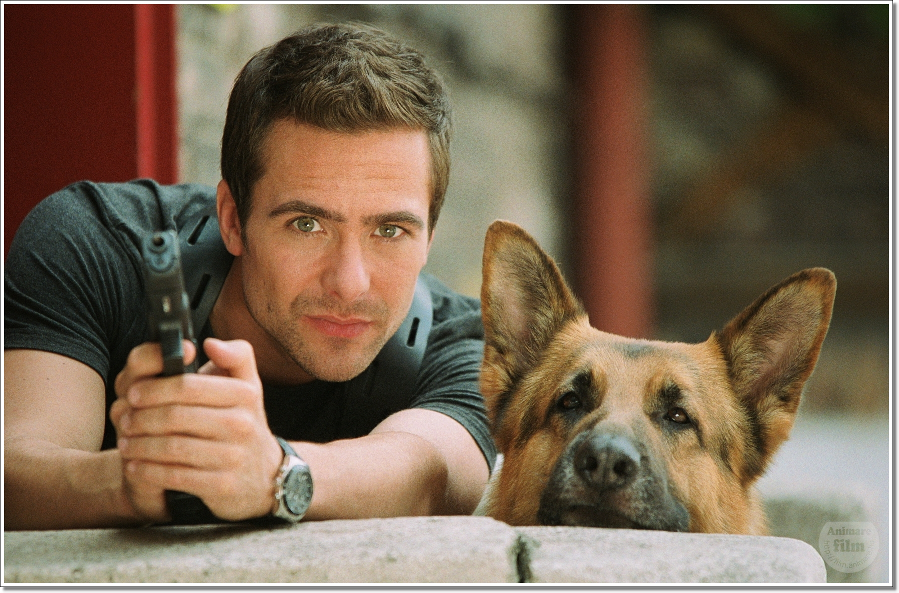 Tv Shows Like Rex The Police Dog